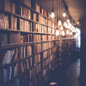 blur-book-stack-books-590493 (1)
