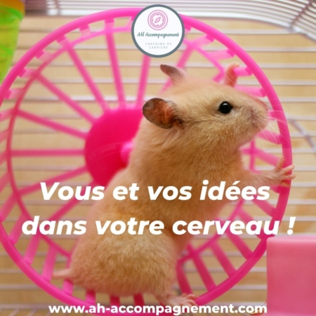 AH ACCOMPAGNEMENT (7)